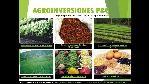 Logo de Agroinversiones p&g