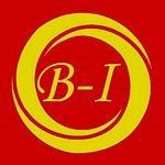 Logo de B-IMPORT