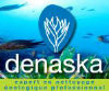 Logo de DENASKA