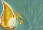 Logo de Gota de Vida
