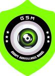 Logo de Groupe Surveillance Maroc