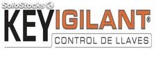 Logo de Key Vigilant S.L.U.