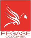 Logo de Pegase Colombia SAS