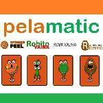 Logo de Pelamatic SL
