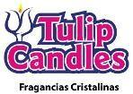 Logo de Tulip Candles - Velas de Gel y Gel Para Velas