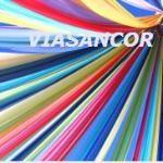 Logo de Vianney Sanchez