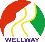 Logo de Wellway s.l.
