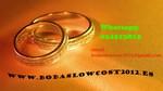 Logo de www.bodaslowcost2012.es
